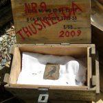Foto der Grabungskiste aus dem Freilichtmuseum Detmold